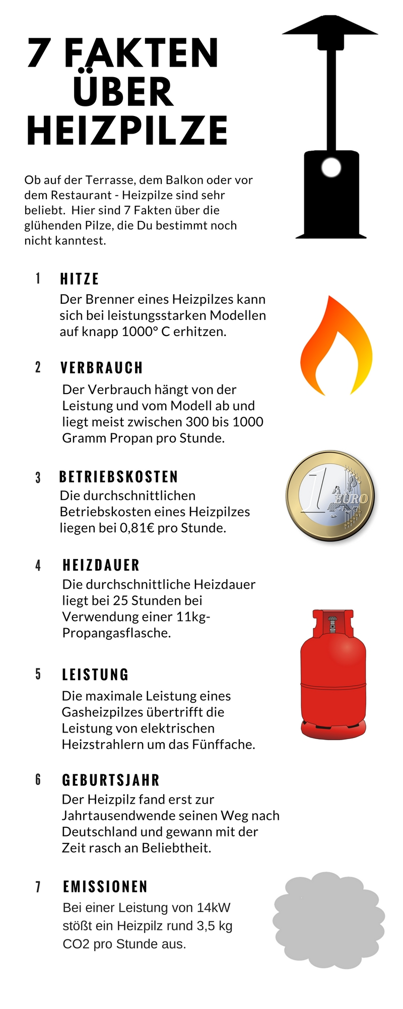 heizpilz-infografik